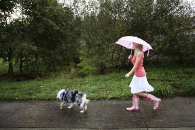 Holínky Evercreatures: Projděte se podzimem